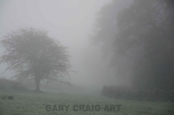 Foggy day over Cairnsmore#2