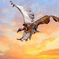 Rupells Vulture - Landing