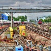 Wembley Park Passing Trains