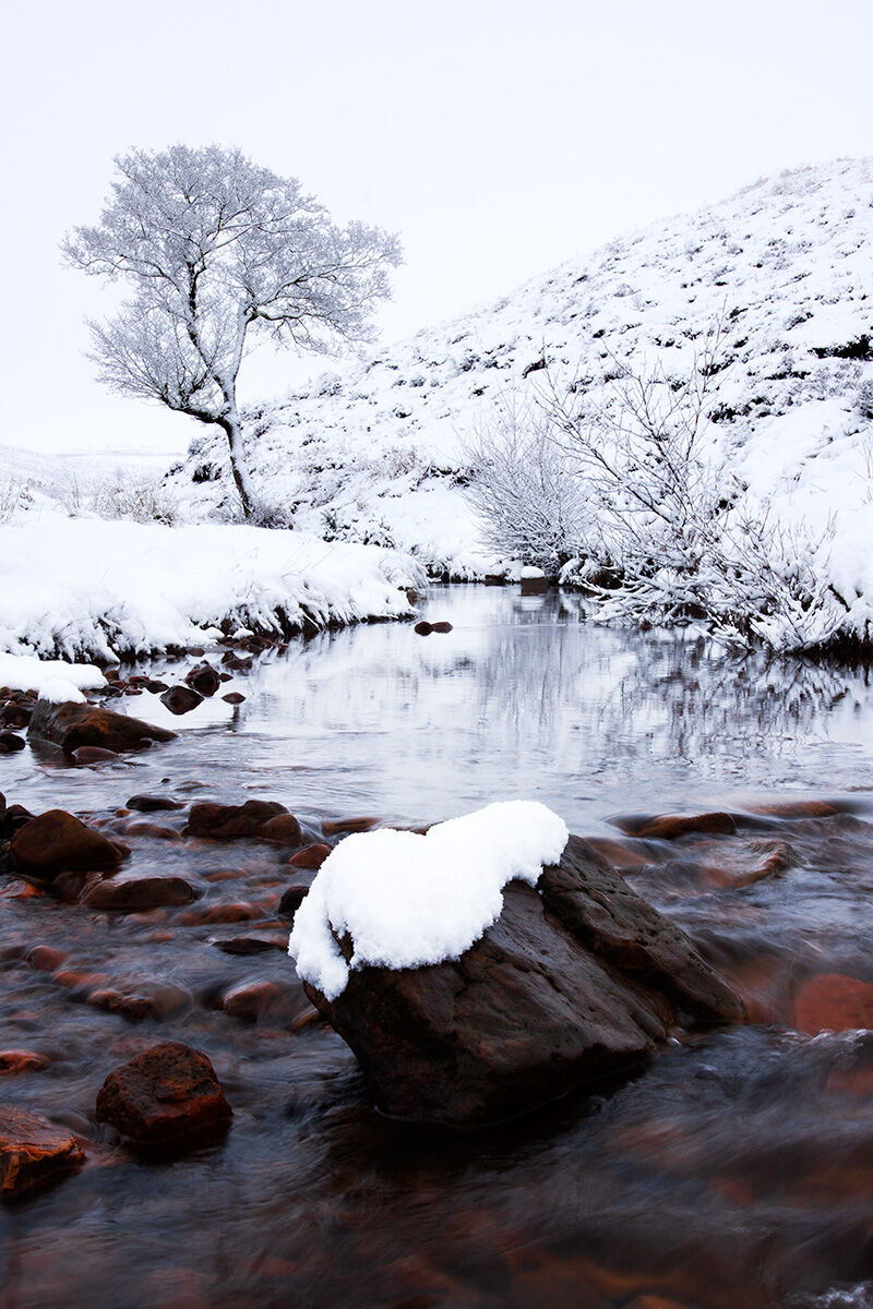 COLD WATERS OF CRABDALE