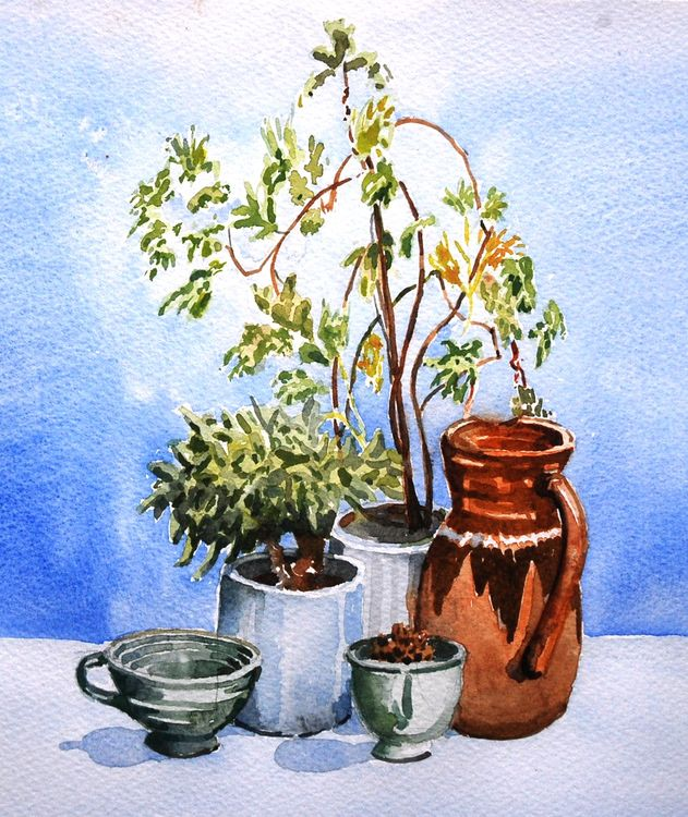 Still Life with Leggy Plant, watercolour by Willie Drea