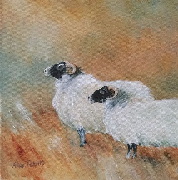 Blackfaced Sheep -acrylic by Anne Roberts