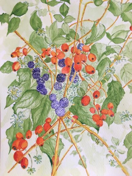 Autumn Fruits by Pat Thompson
