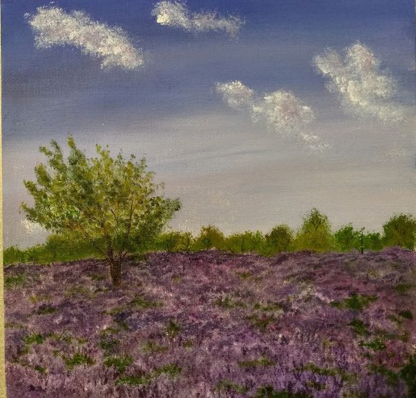 Northumberland Heather by Sheila Lewis