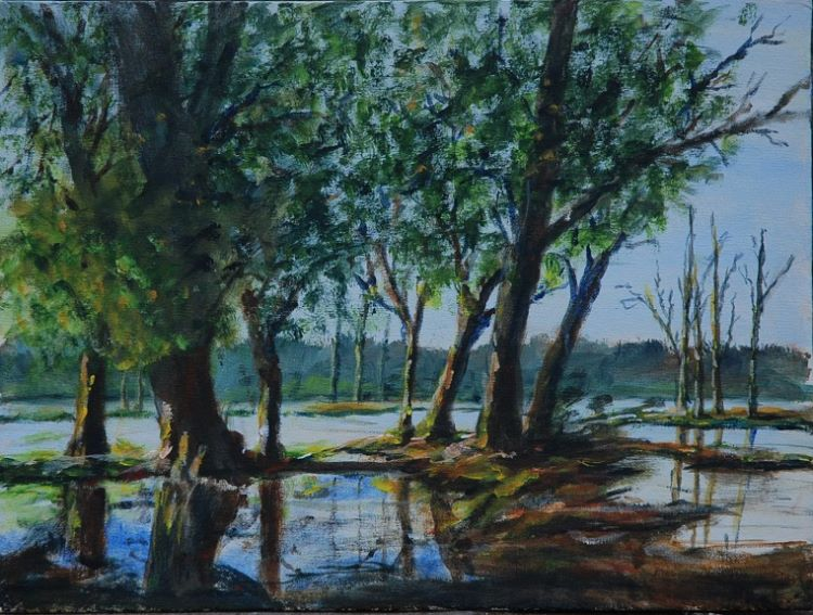Flooded Trees by Audrey Drynan. -acrylic