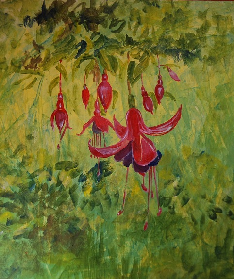 Fuchsia, by Willie Drea