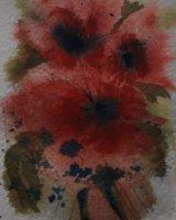 Flowers Allla Prima