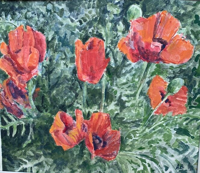 Anne Brown, Poppies