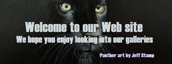 Black Panther crop lttrbx script2