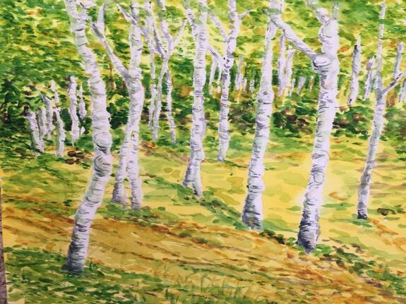 Pat Thompson, Woodlands