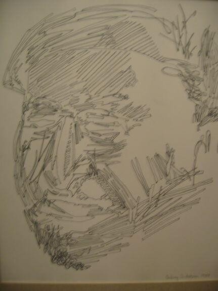 Aubrey Anderson, Portrait
