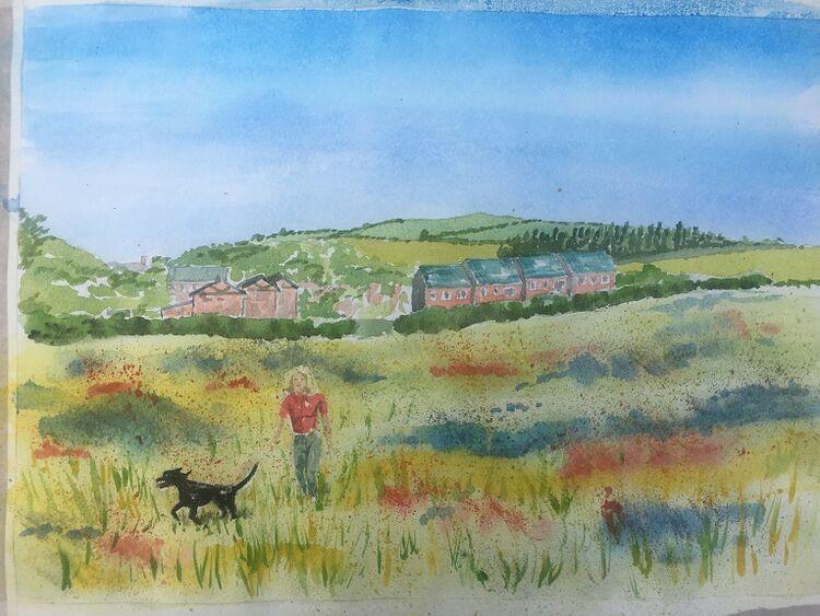 Dougie Johnston, Dog Field