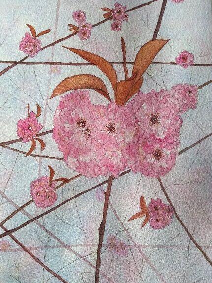 Sheila Lewis, watercolour- untitled