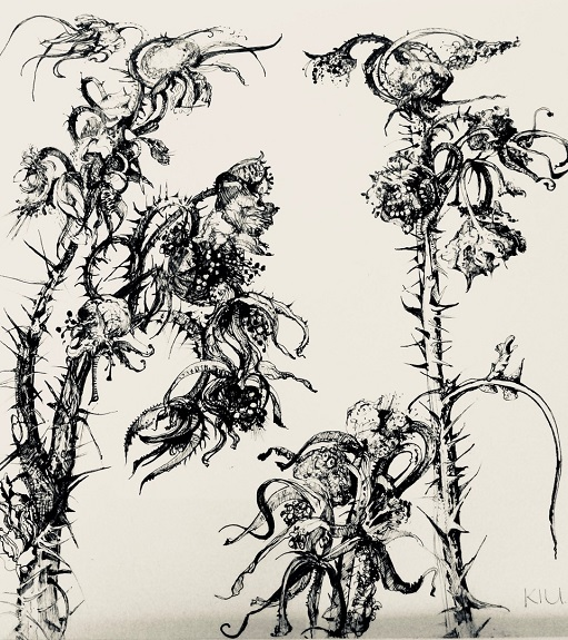 87 -Rose Hips by Karen Stott. -ink
