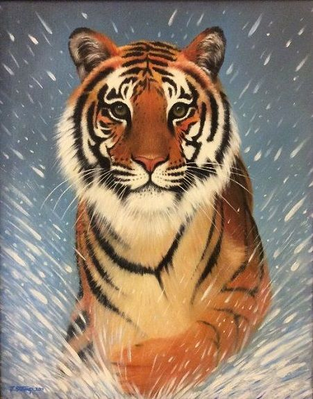 94 Siberian Tiger -oils by Jeff Stamp
