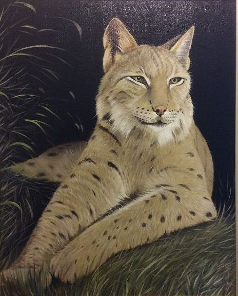 95 The Lynx -oils by Jeff Stamp