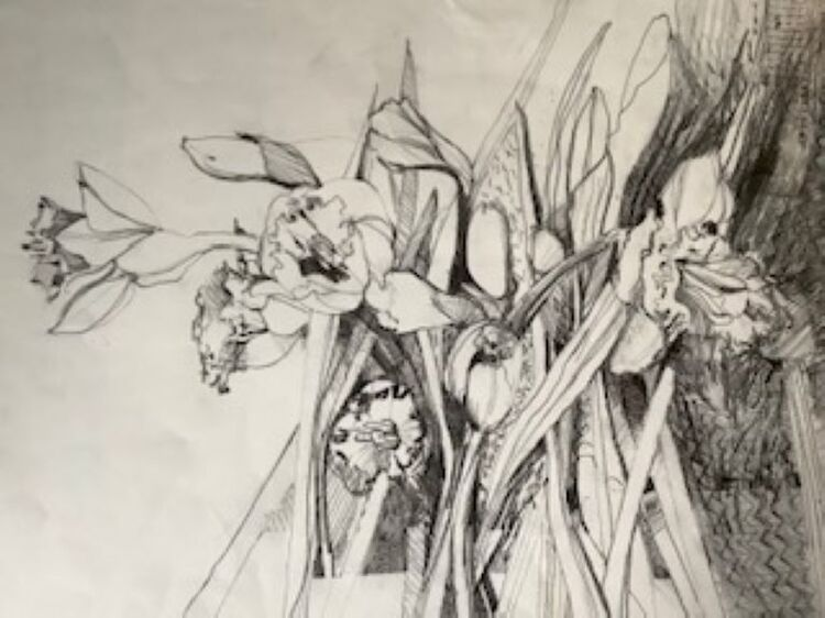 Karen Stott ' Daffodils '