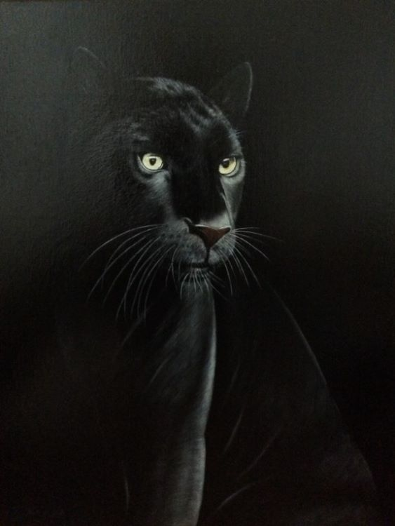 Black Panther by Jeff Stamp
