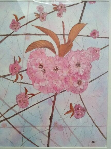 Sheila Lewis, Cherry Blossoms