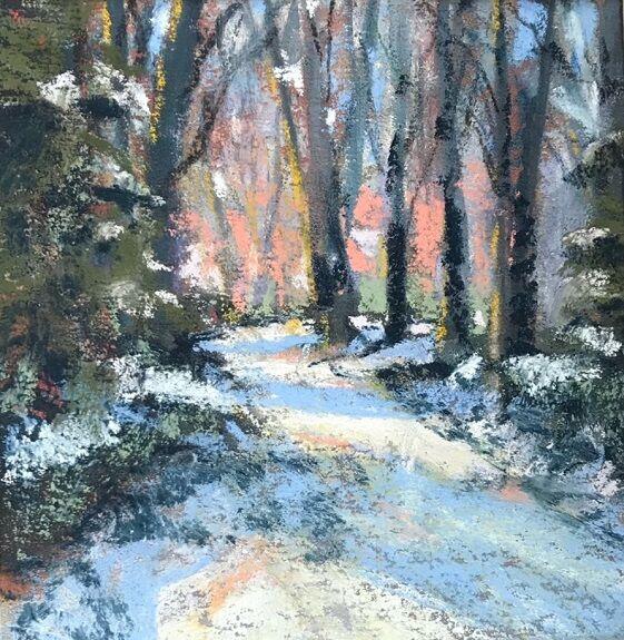 Tim Griffiths -' Winter in Saltwell Park '