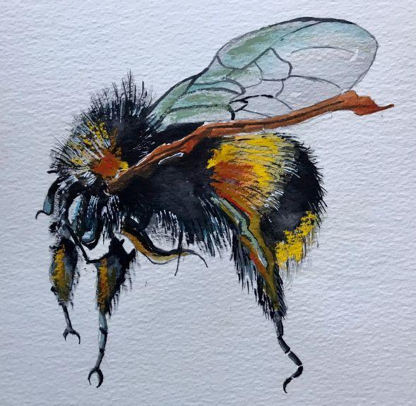 Tim Griffiths -Honeybee