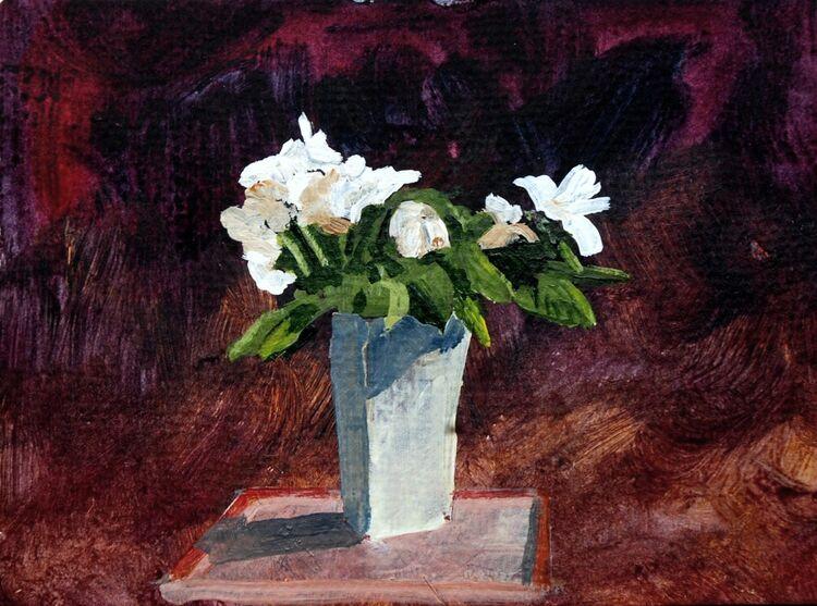 Willie Drea 'Aldi Roses '