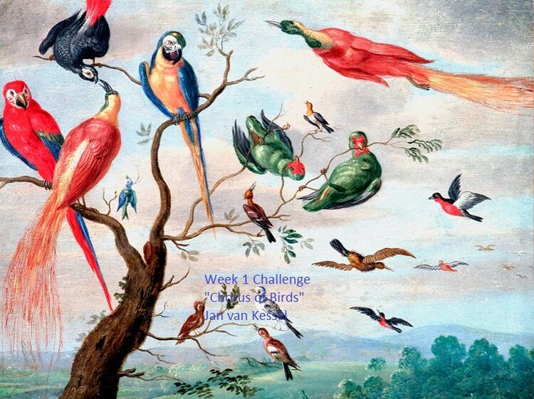 "Shipley Challenge no.1 -Jan van Kessel ""The Chorus of Birds"""