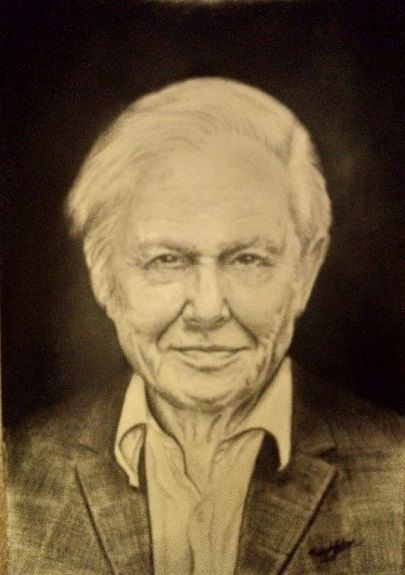 Sir David Attenborough -charcoal- by Michael Jackson