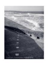 Coastal Blue #5