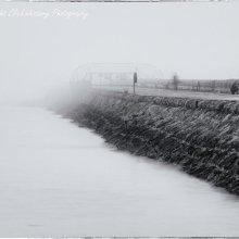 Zen and the art of fog #1
