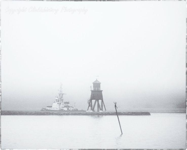 Zen and the art of fog #8