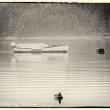 Gentle ripples flowing