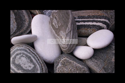 """""""White words like stones one picks up by the seashore"""" - digital colour photograph"""