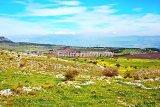 #D113 - The spring landscape.