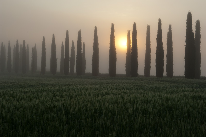 Dawn in Tuscany