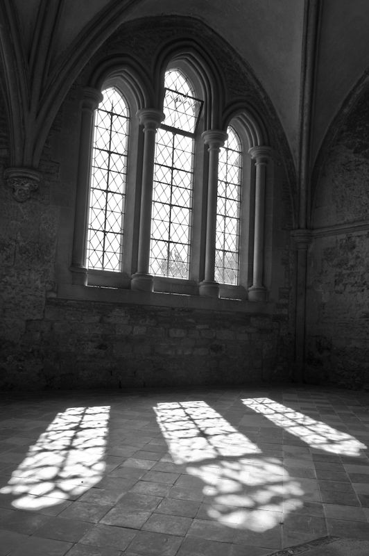 Windows, Lacock Abbey