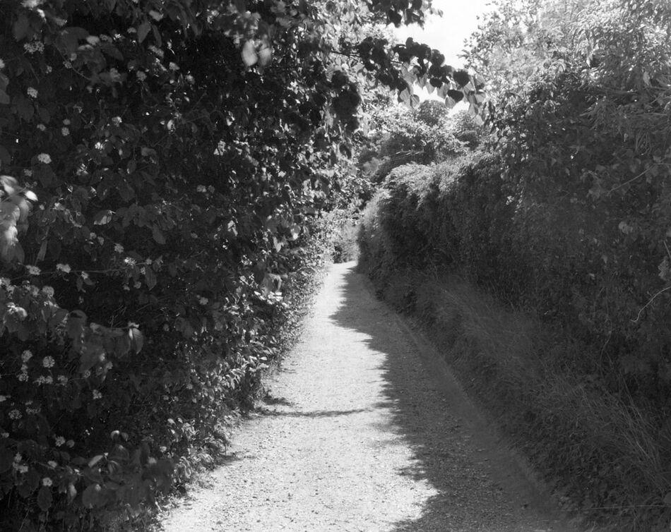 Denis's Lane