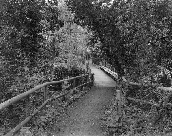Horsebridge (1)