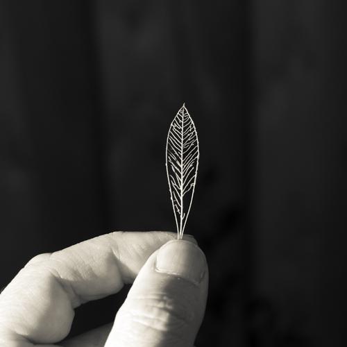 Skeletal leaf and hand