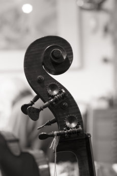 The Violineri 8