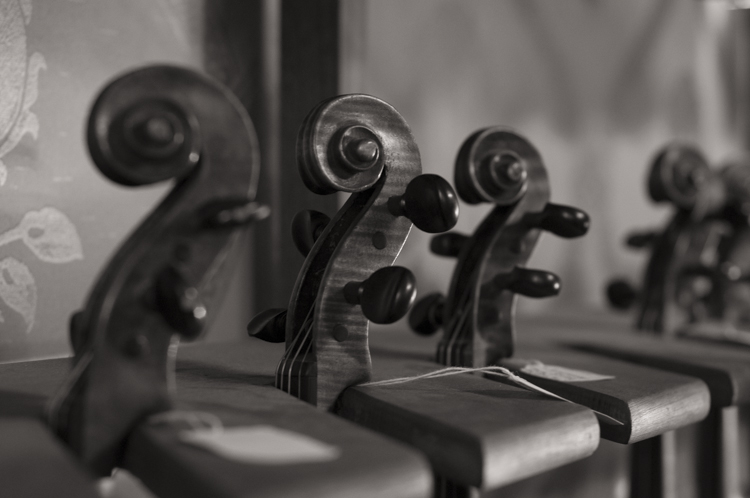 The Violineri 15
