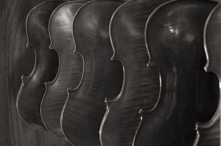 The Violineri 16
