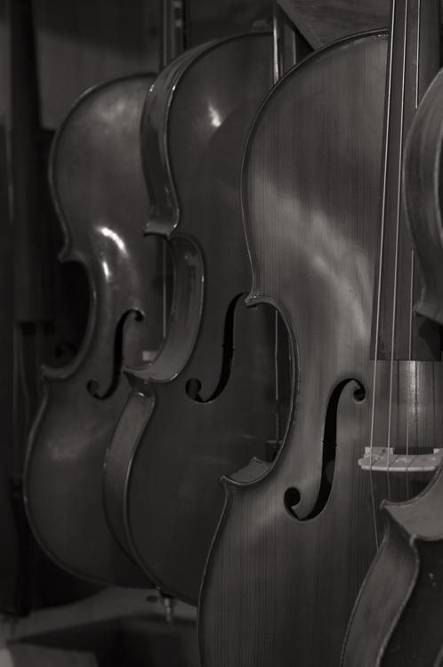 The Violineri 5