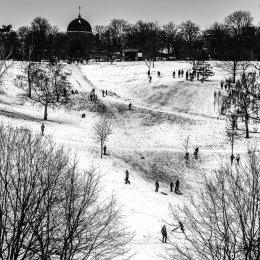 2018-03-01(Greenwich-Snow)-047