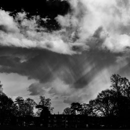 2018-03-07(Eltham-Park)-168