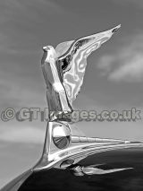 1950 Ford Hood Ornament in Black and White