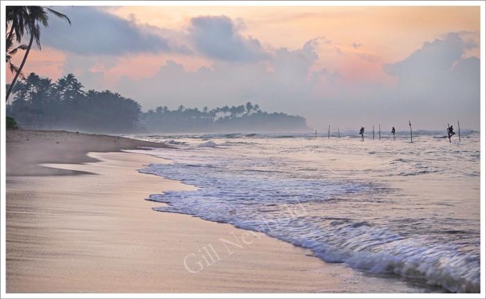 Stilt Fishermen at Sunrise