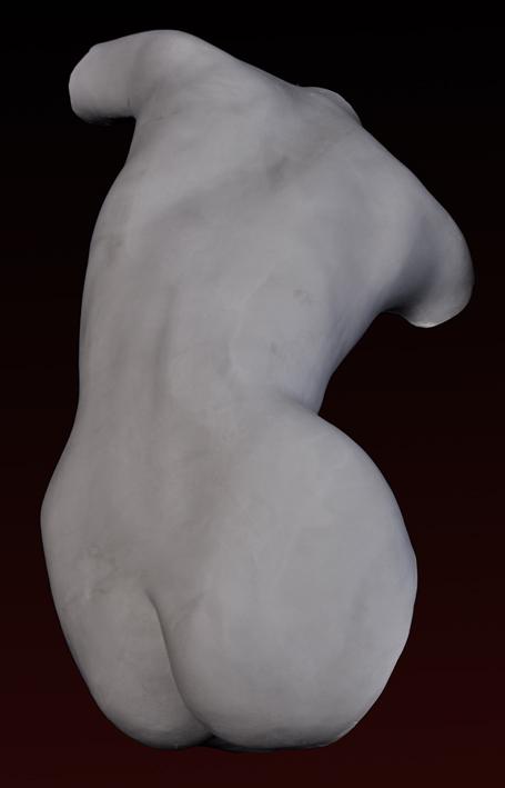 A009 schiena Femminile