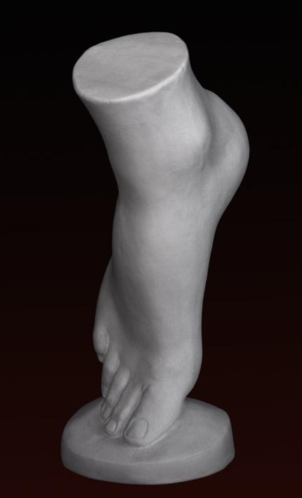 A038 Piede femminile