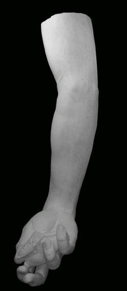 A083 Braccio destro del David
